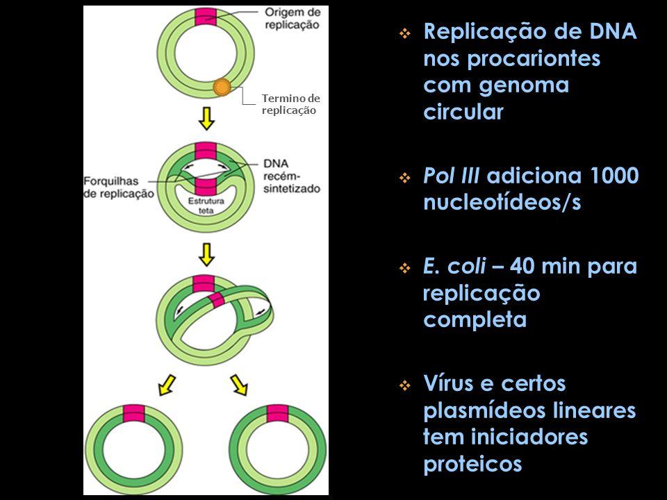 Replicação de DNA nos procariontes com genoma circular