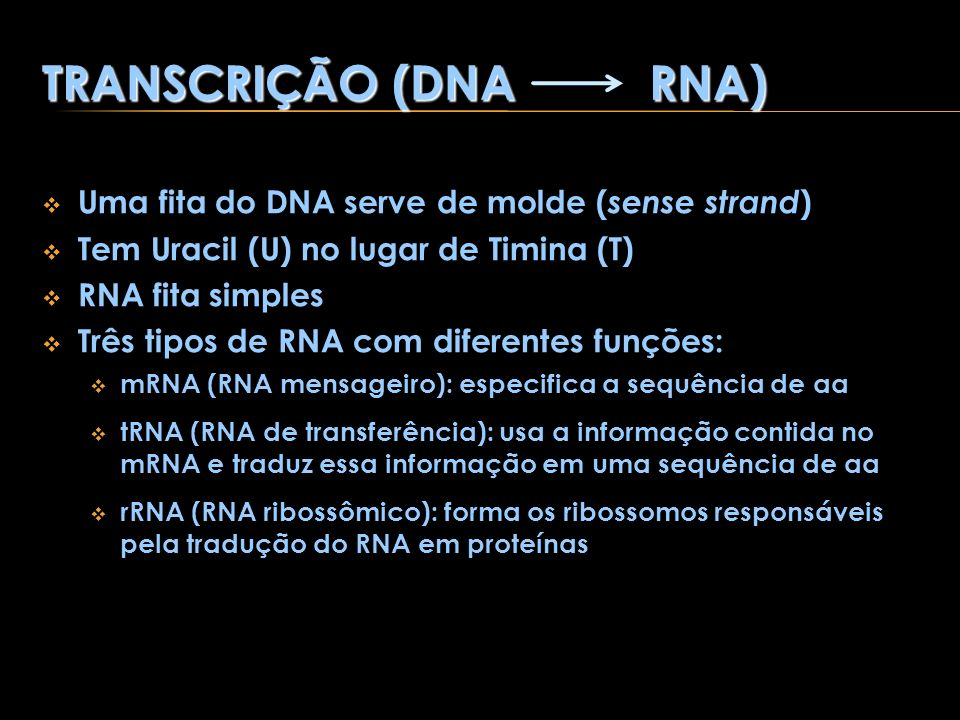 TRANSCRIÇÃO (DNA RNA) Uma fita do DNA serve de molde (sense strand)