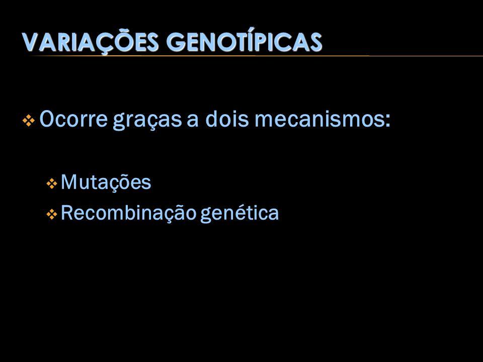 VARIAÇÕES GENOTÍPICAS