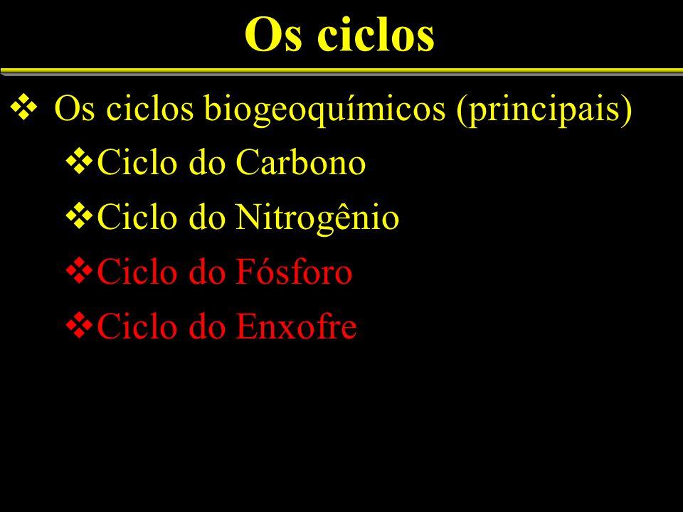 Os ciclos Os ciclos biogeoquímicos (principais) Ciclo do Carbono