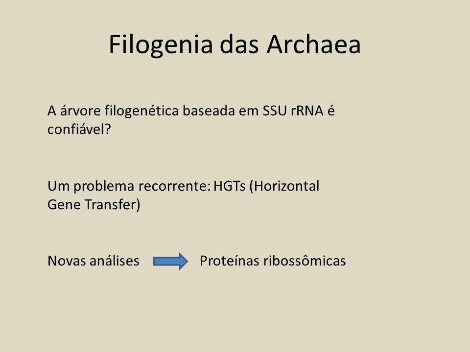Filogenia das Archaea A árvore filogenética baseada em SSU rRNA é confiável Um problema recorrente: HGTs (Horizontal Gene Transfer)