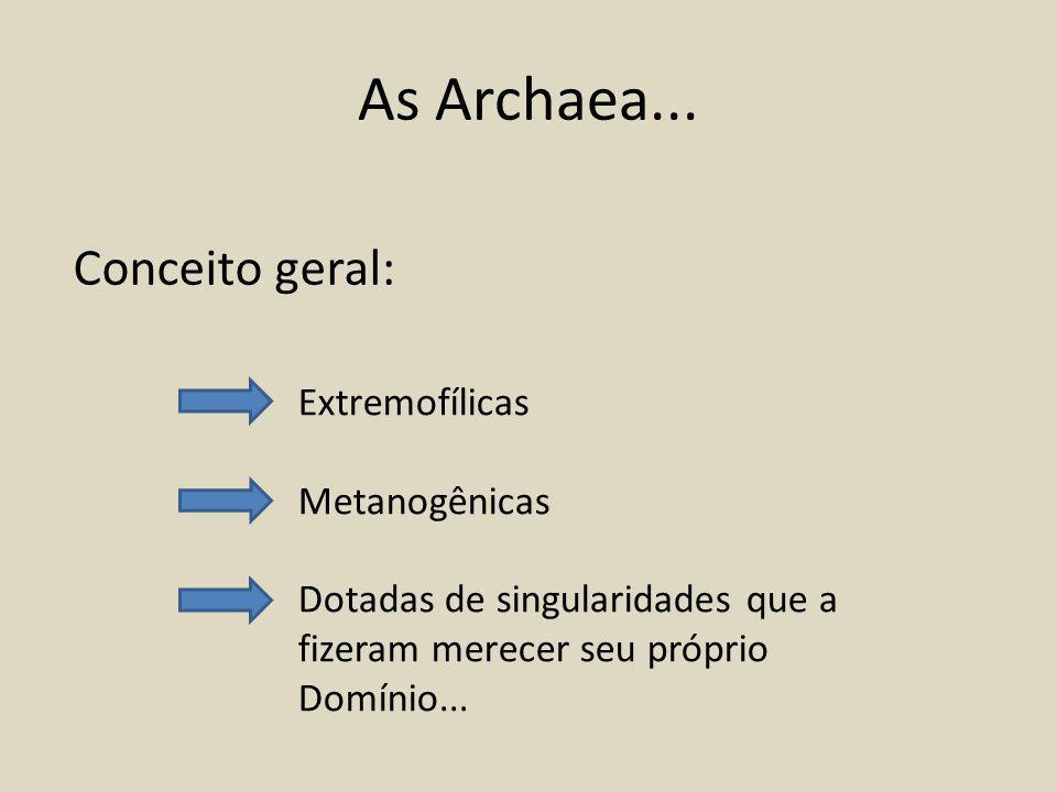 As Archaea... Conceito geral: Extremofílicas Metanogênicas