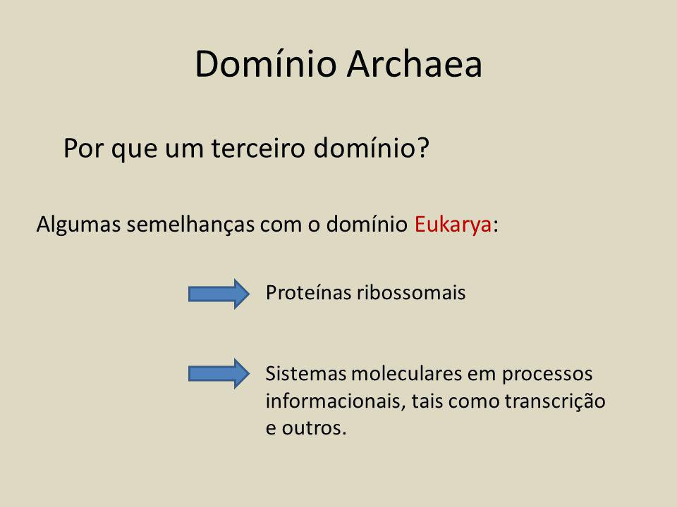 Domínio Archaea Por que um terceiro domínio