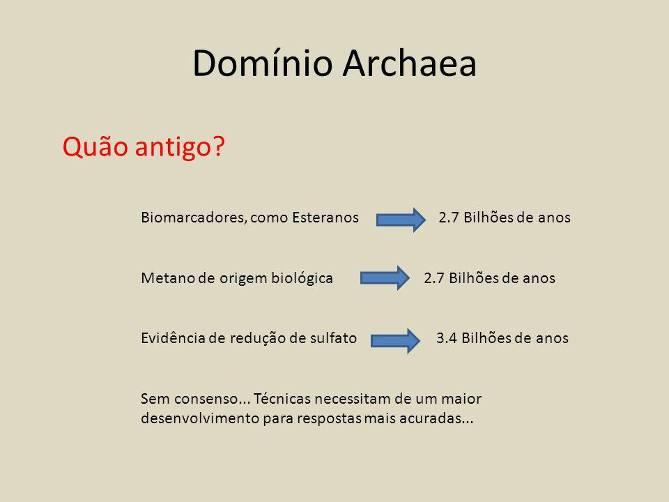 Domínio Archaea Quão antigo