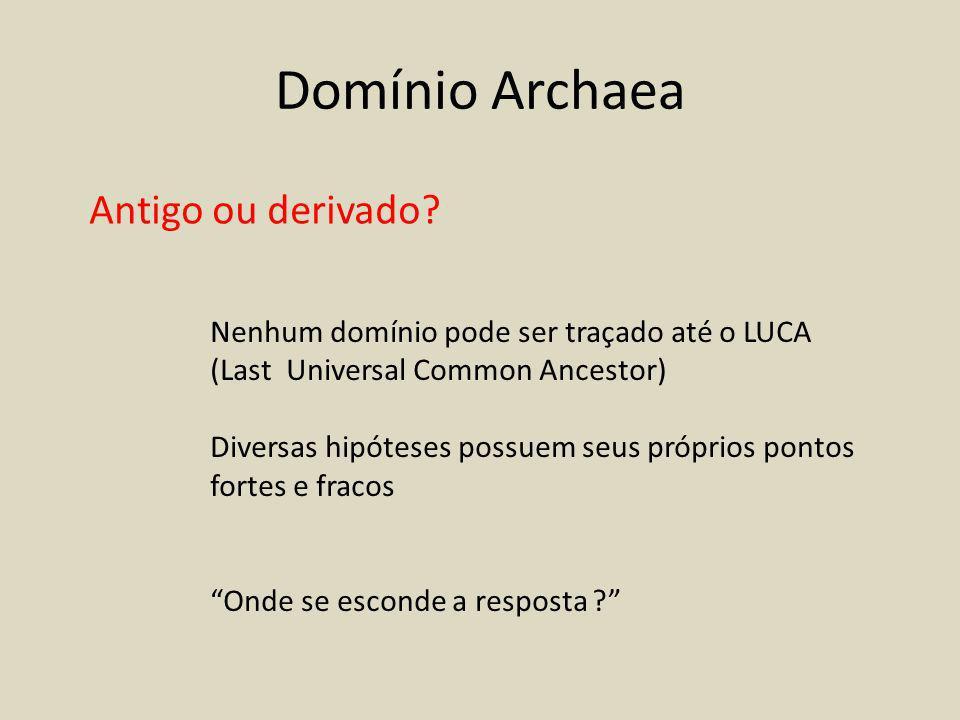 Domínio Archaea Antigo ou derivado