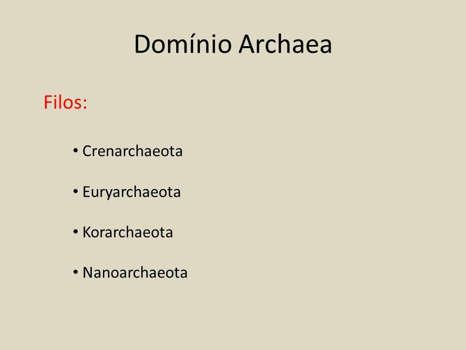Domínio Archaea Filos: Crenarchaeota Euryarchaeota Korarchaeota