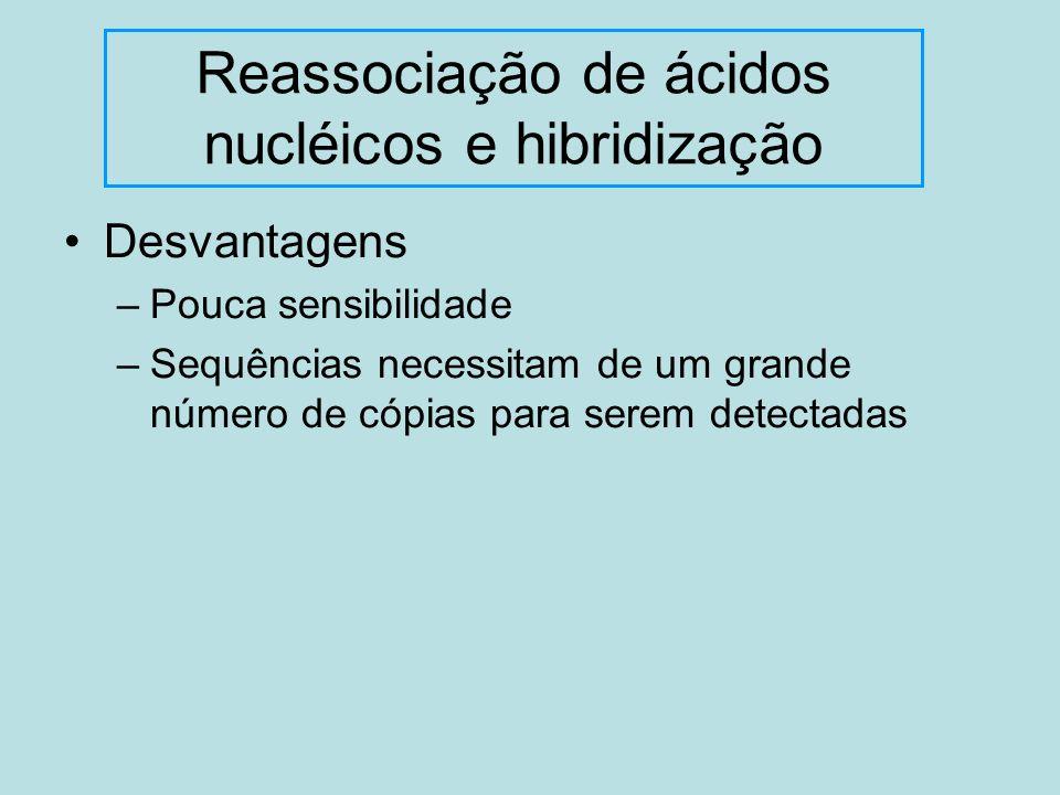 Reassociação de ácidos nucléicos e hibridização