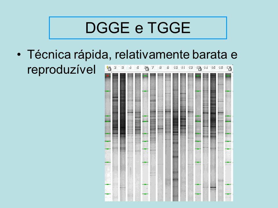 DGGE e TGGE Técnica rápida, relativamente barata e reproduzível