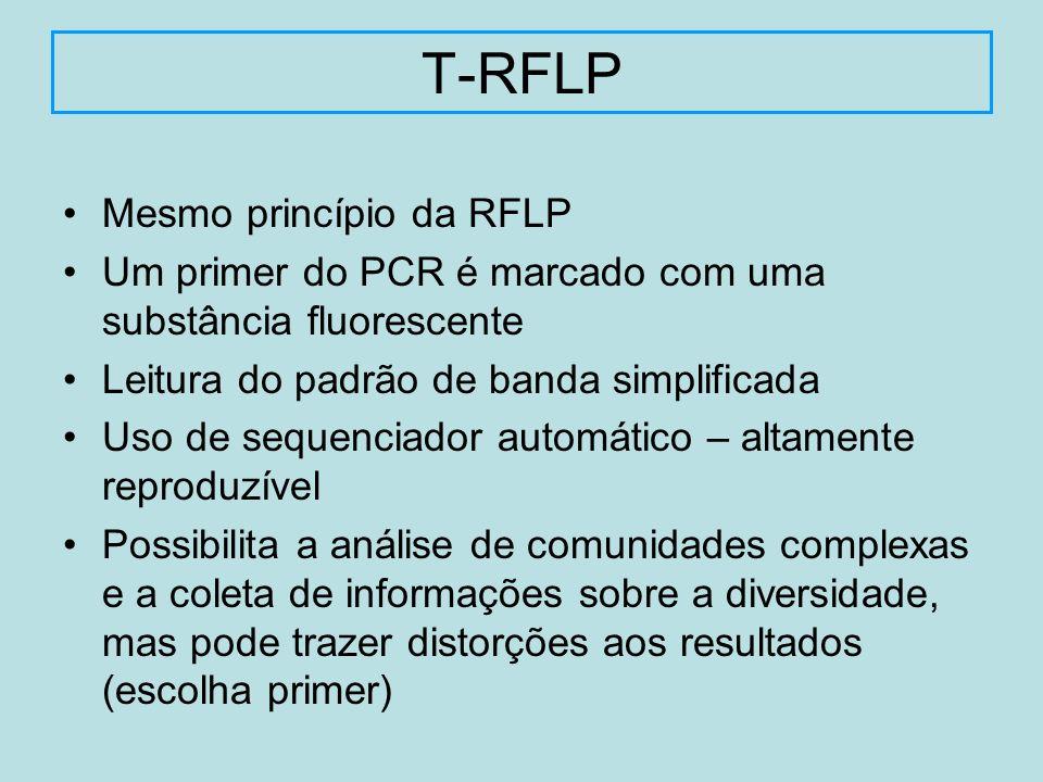 T-RFLP Mesmo princípio da RFLP