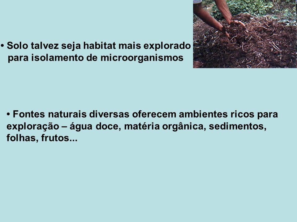 • Solo talvez seja habitat mais explorado para isolamento de microorganismos