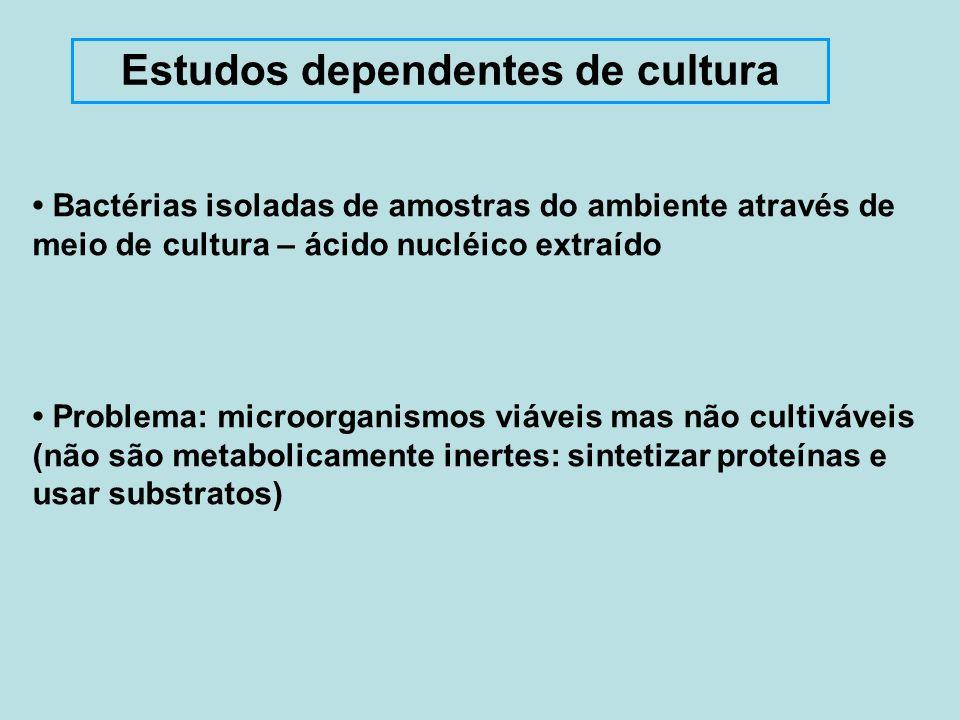 Estudos dependentes de cultura