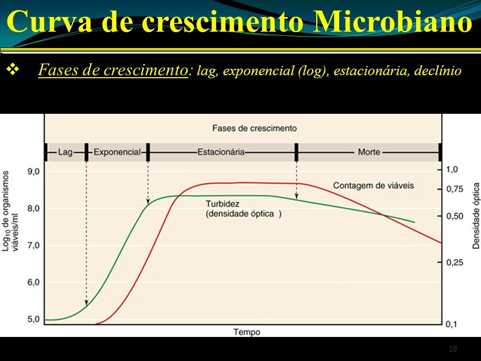 Curva de crescimento Microbiano
