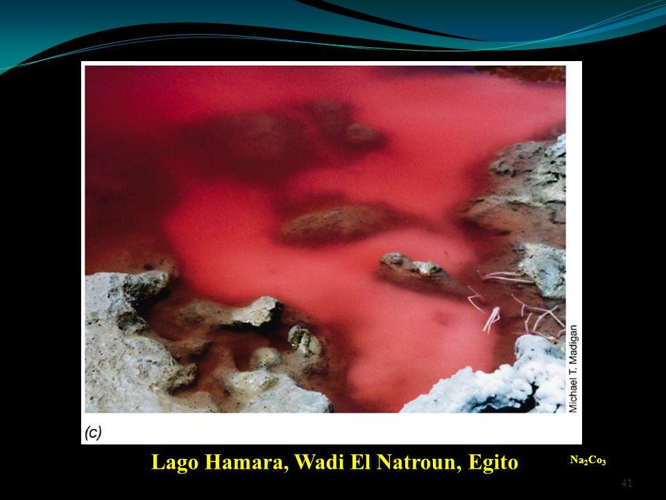 Lago Hamara, Wadi El Natroun, Egito