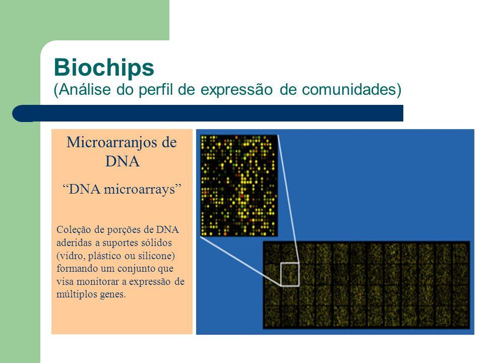 Biochips (Análise do perfil de expressão de comunidades)