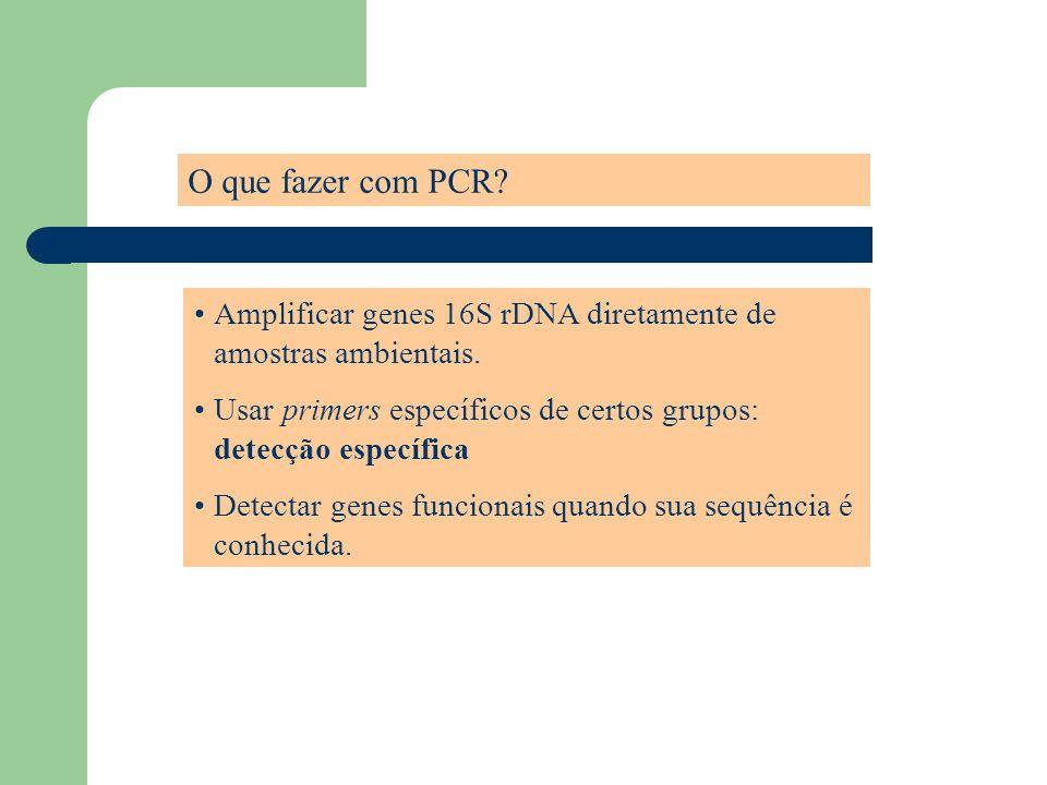 O que fazer com PCR Amplificar genes 16S rDNA diretamente de amostras ambientais. Usar primers específicos de certos grupos: detecção específica.