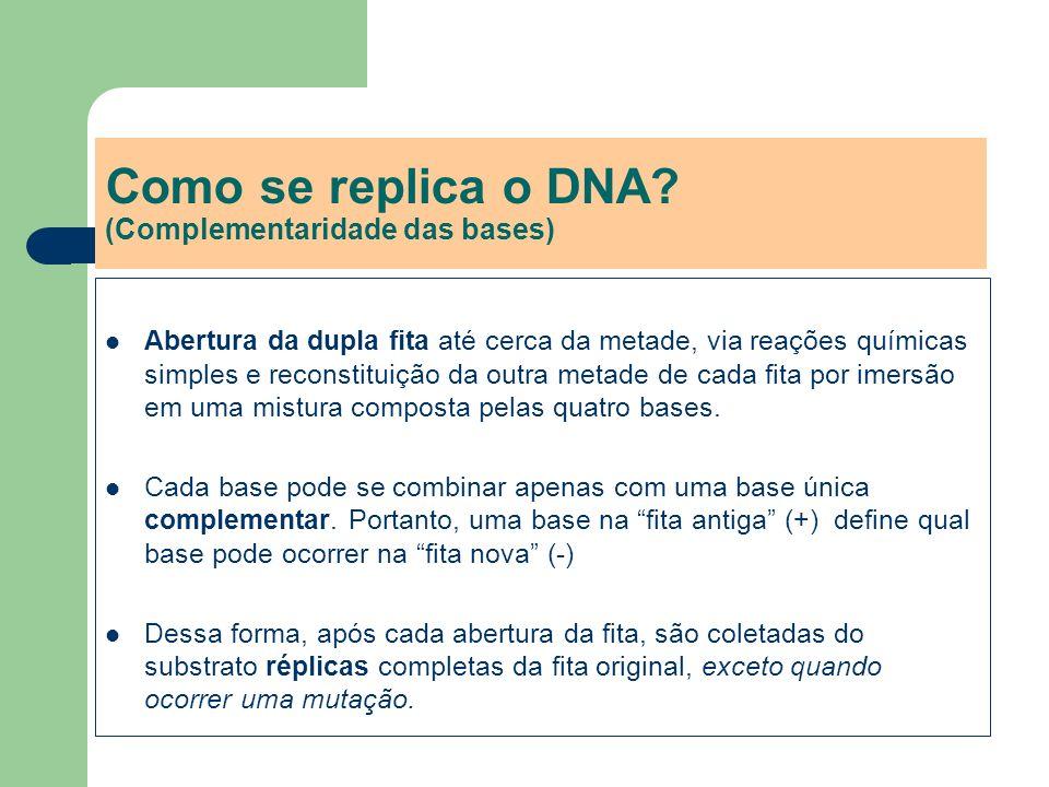 Como se replica o DNA (Complementaridade das bases)