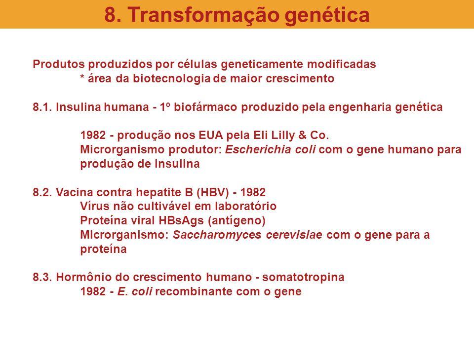 8. Transformação genética