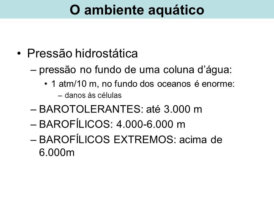 O ambiente aquático Pressão hidrostática