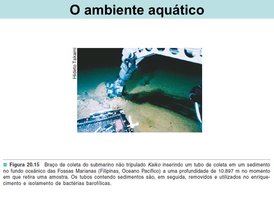 O ambiente aquático