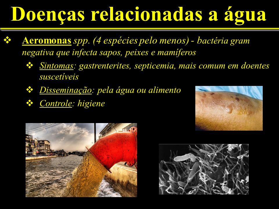 Doenças relacionadas a água