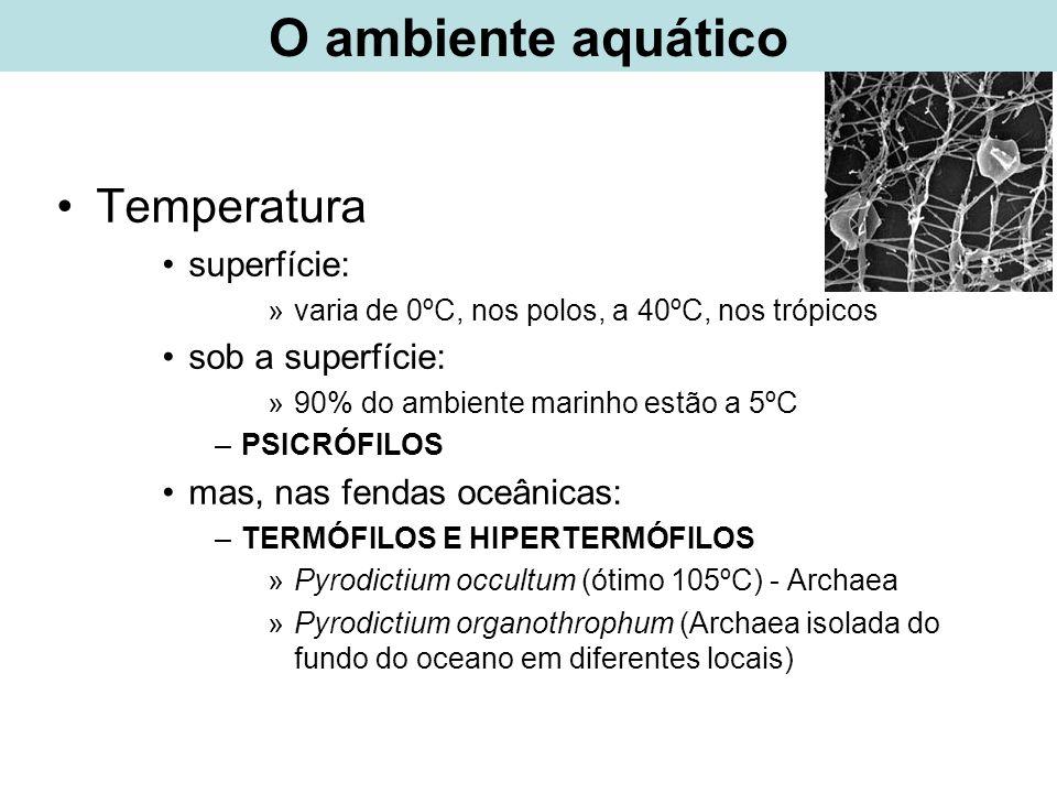 O ambiente aquático Temperatura superfície: sob a superfície:
