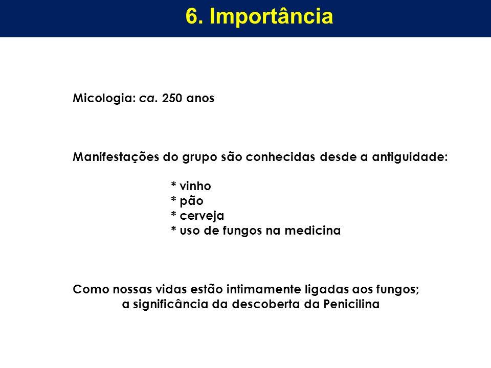 6. Importância Micologia: ca. 250 anos
