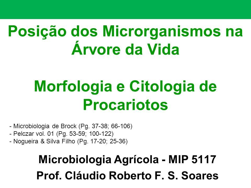 Microbiologia Agrícola - MIP 5117 Prof. Cláudio Roberto F. S. Soares