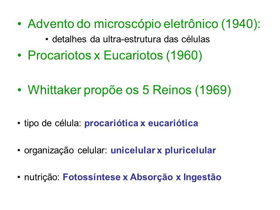 Advento do microscópio eletrônico (1940):