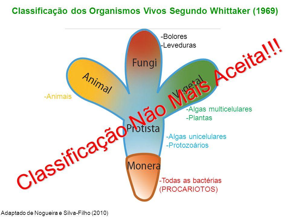 Classificação dos Organismos Vivos Segundo Whittaker (1969)