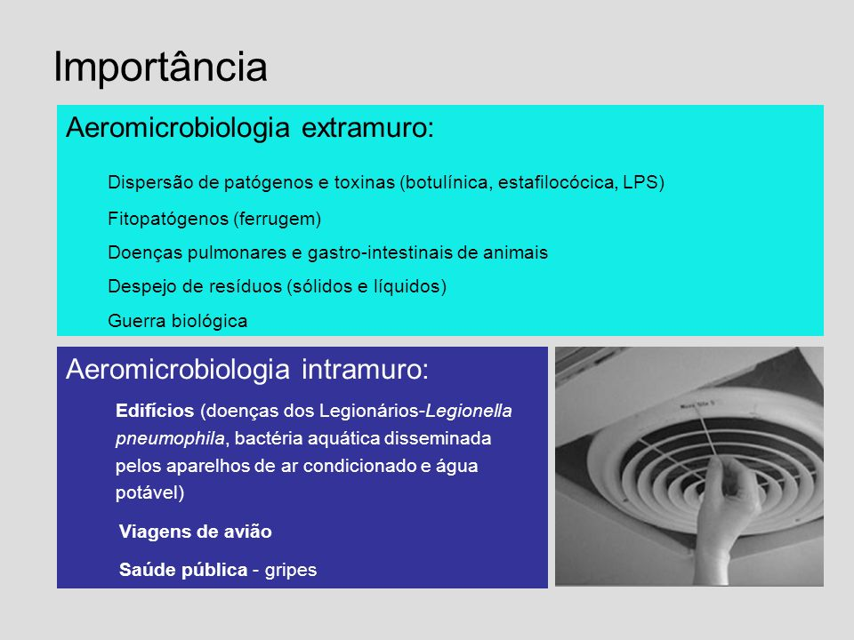 Importância Aeromicrobiologia extramuro:
