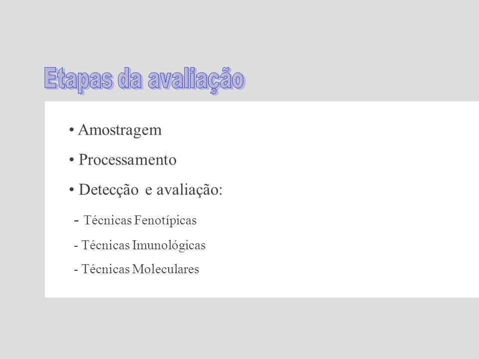 - Técnicas Fenotípicas