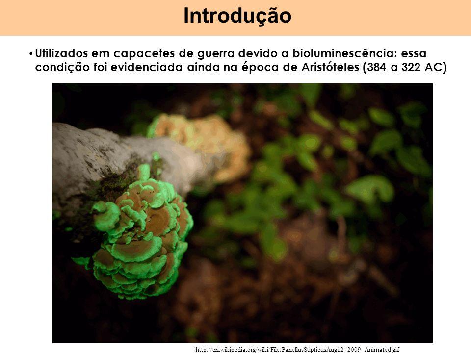 IntroduçãoUtilizados em capacetes de guerra devido a bioluminescência: essa condição foi evidenciada ainda na época de Aristóteles (384 a 322 AC)