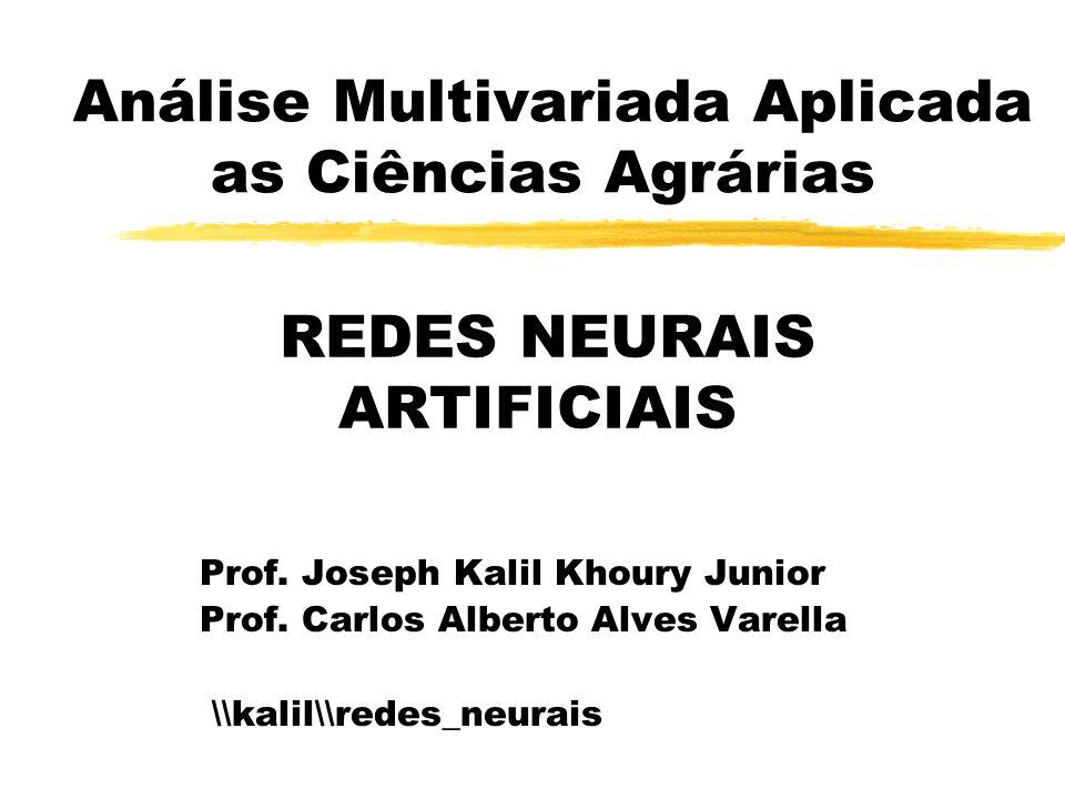 Análise Multivariada Aplicada as Ciências Agrárias