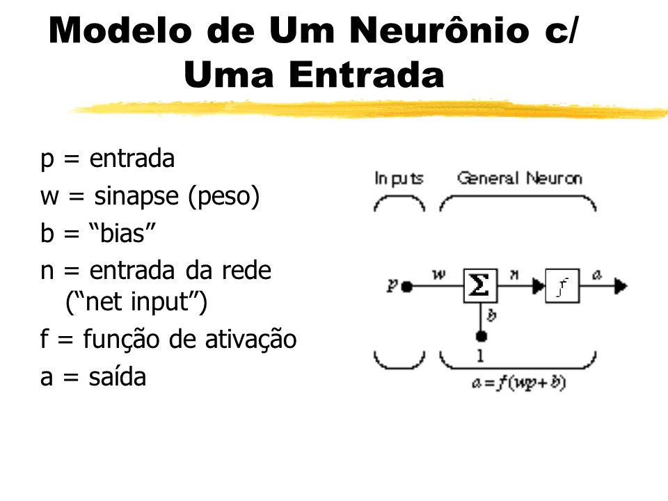 Modelo de Um Neurônio c/ Uma Entrada