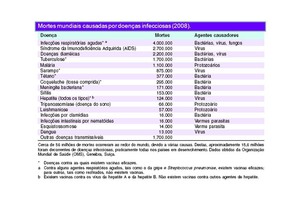 Mortes mundiais causadas por doenças infecciosas (2008).