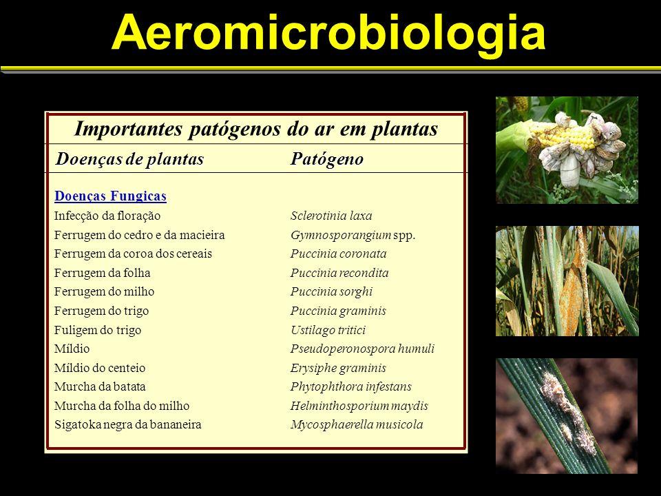 Importantes patógenos do ar em plantas
