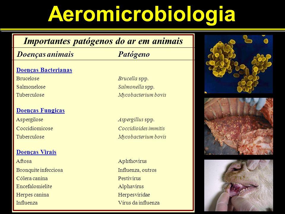 Importantes patógenos do ar em animais