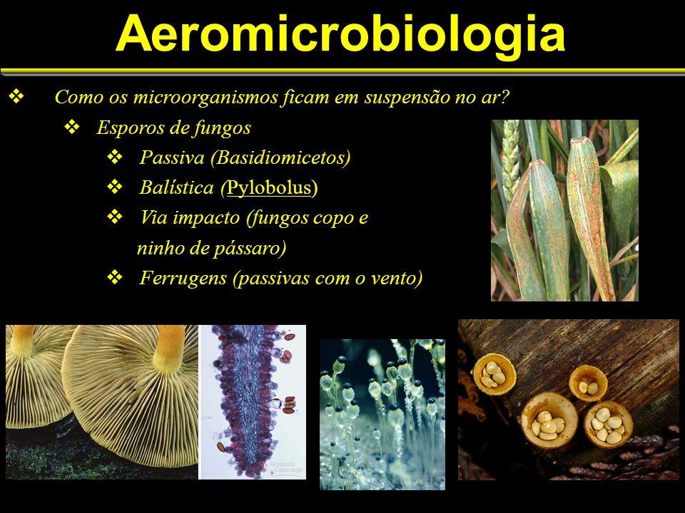 Aeromicrobiologia Como os microorganismos ficam em suspensão no ar