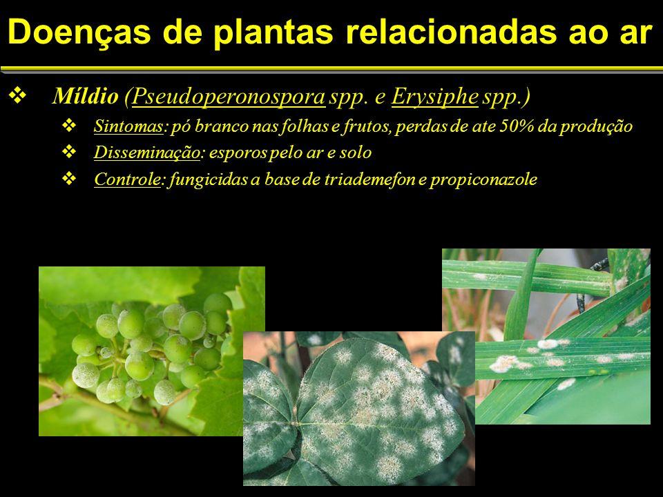 Doenças de plantas relacionadas ao ar