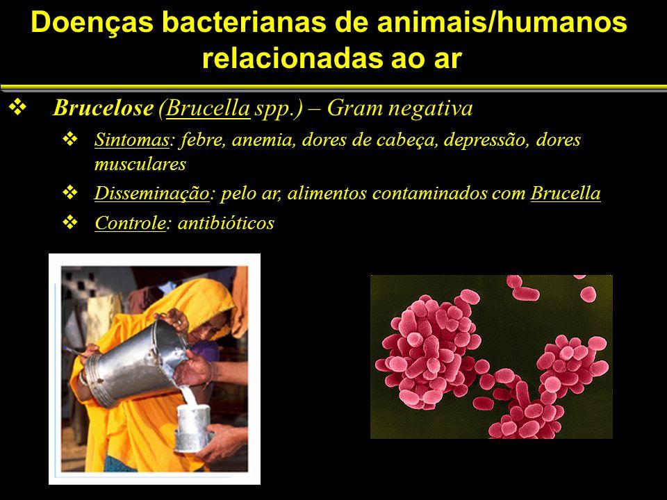Doenças bacterianas de animais/humanos