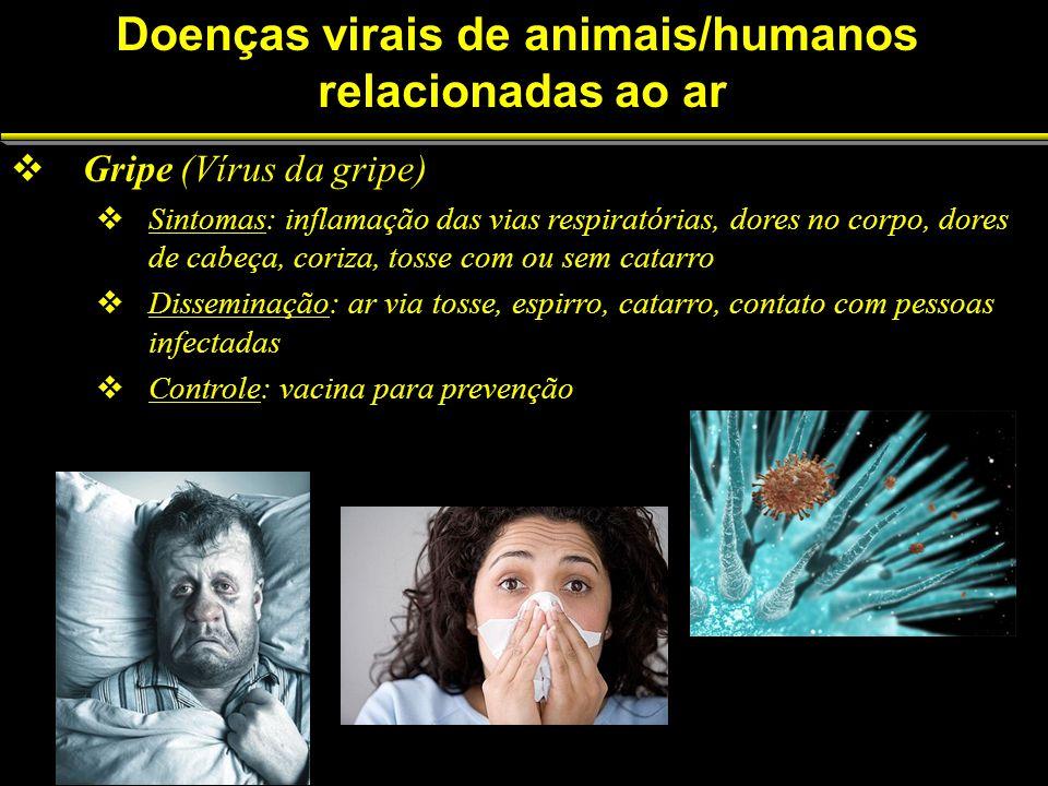 Doenças virais de animais/humanos