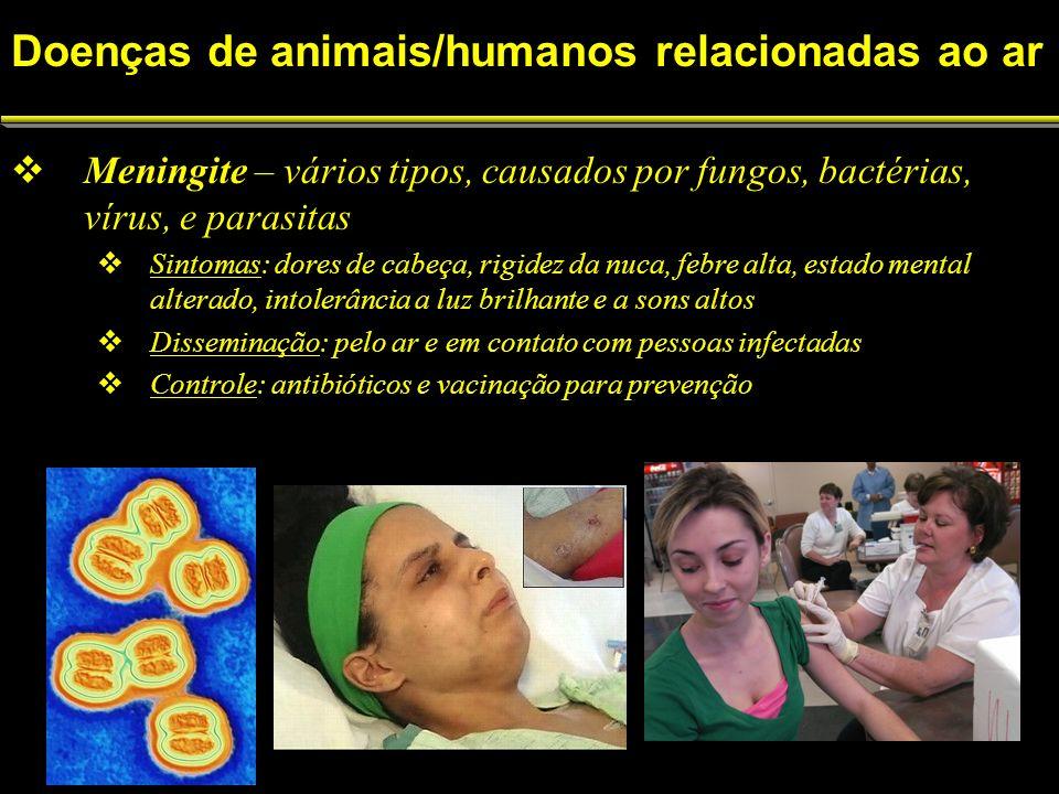 Doenças de animais/humanos relacionadas ao ar