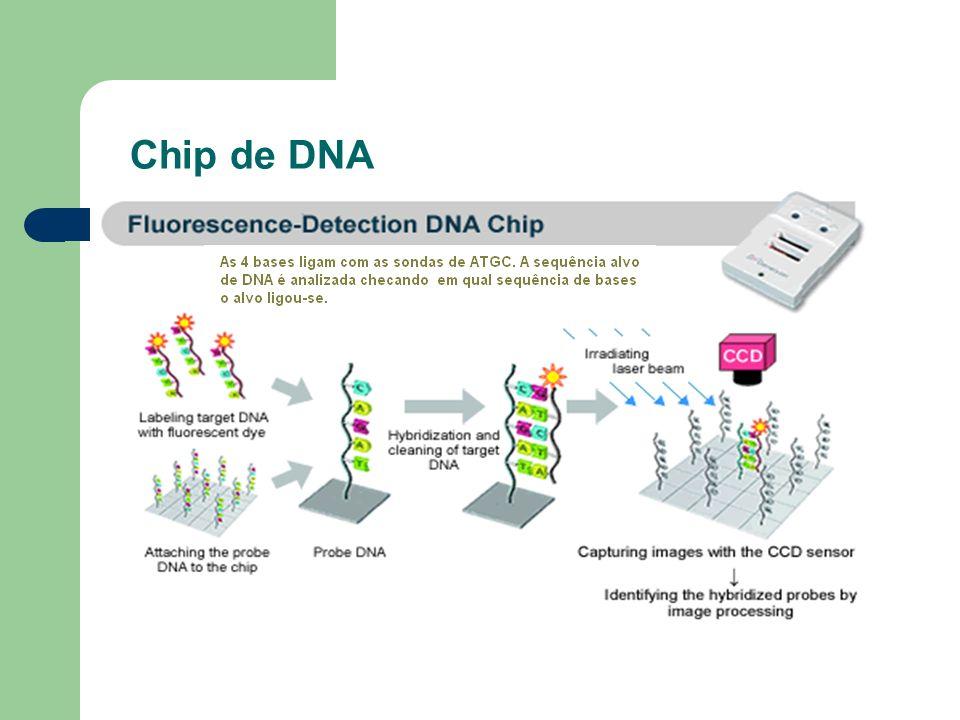 Chip de DNA
