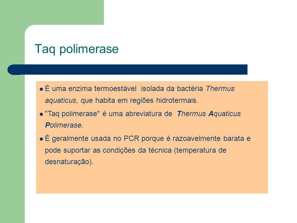 Taq polimeraseÉ uma enzima termoestável isolada da bactéria Thermus aquaticus, que habita em regiões hidrotermais.