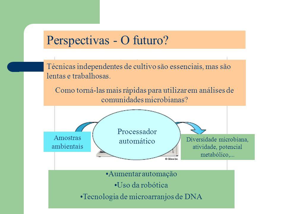 Perspectivas - O futuro
