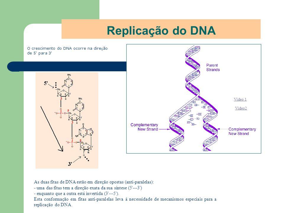 Replicação do DNAO crescimento do DNA ocorre na direção de 5 para 3 Vídeo 1. Vídeo2.