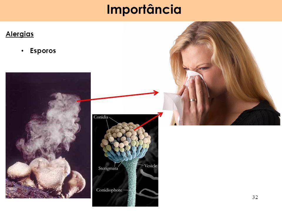 Importância Alergias Esporos