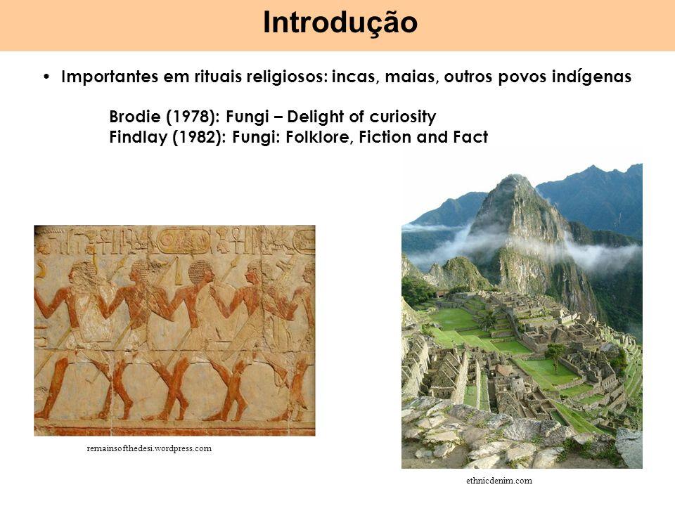 IntroduçãoImportantes em rituais religiosos: incas, maias, outros povos indígenas. Brodie (1978): Fungi – Delight of curiosity.