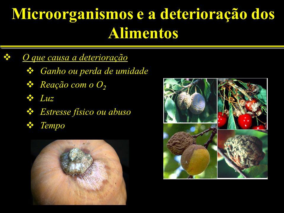 Microorganismos e a deterioração dos Alimentos