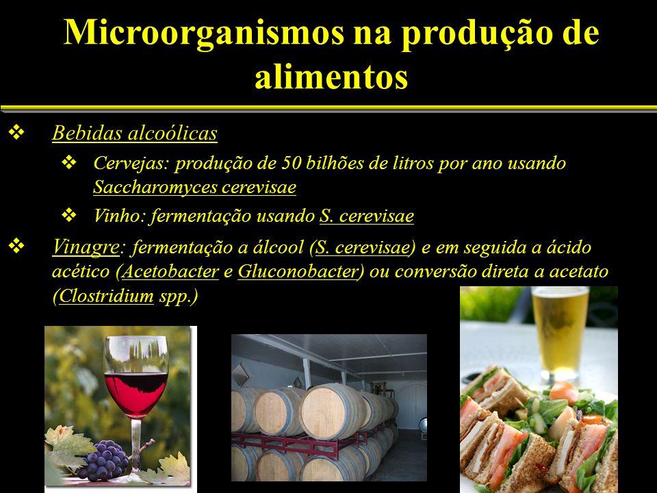 Microorganismos na produção de alimentos